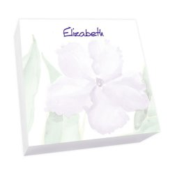 Watercolor Pansy Memo Square - White Refill